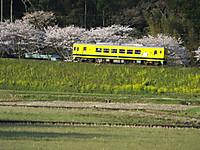 Isumi350_20140401_02