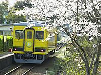 Isumi350_20140402_05