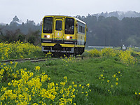 Isumi200_20140403_01