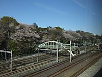 Niigata20140405_07