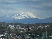 Niigata20140405_09