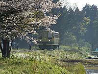 Isumi200_20140408_02