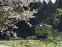 Isumi350_20140407_03
