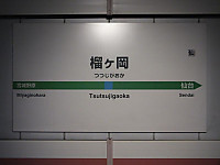 Sendaikinko20140406_12_4