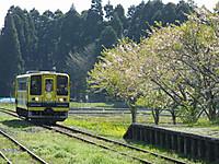 Isumi200_20140412_12