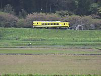 Isumi350_20140414_01