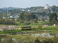 Isumi200_20140417_03