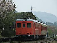 Isumi_otaki20140418_11