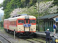 Isumi_otaki20140418_16_2