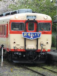 Isumi_otaki20140418_17
