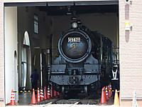 Tokiwaji20140511_40