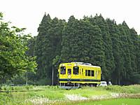 Isumi300_20140526_01