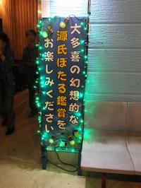 Isumi_hotaru20140615_13