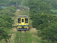 Isumi200_20140617_02