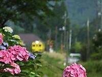 Isumi350_20140623_01