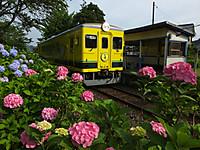 Isumi350_20140623_03