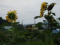 Isumi200_20140713_01
