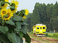 Isumi350_20140722_04