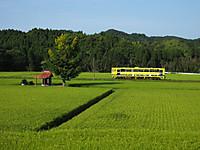 Isumi200_20140801_01