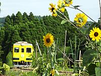 Isumi350_20140808_02