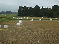 Isumi_nakagawa20140809_02