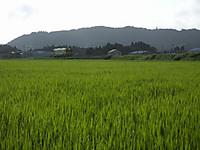 Isumi350_20140903_01_2