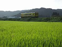 Isumi350_20140903_02