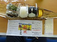 Isumi_rail20140913_20
