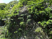 Kawarayuonsen20140922_10