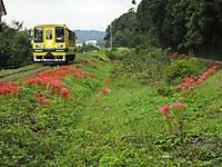 Isumi200_20140924_04