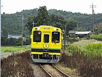 Isumi300_20141004_01