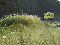 Isumi350_20141010_01