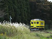 Isumi350_20141014_02