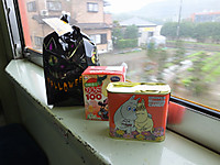 Isumi_rail20141101_09
