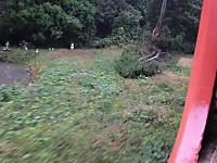 Isumi_rail20141101_16