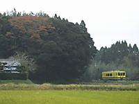 Isumi300_20141109_02