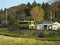Isumi200_20141118_04