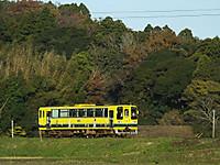 Isumi200_20141127_05