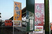 Isumi_ohara20141230_05