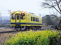 Isumi300_20150130_01