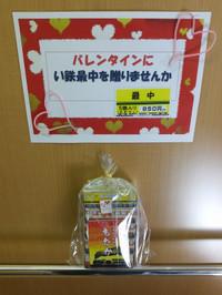 Isumi_rail20150214_09