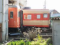 Isumi_kiha52_20150228_05