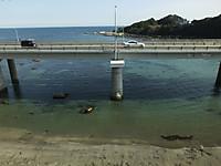 Minami_boso_free20150228_62