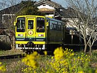 Isumi200_20150313_01