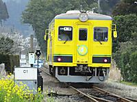 Isumi350_20150314_07