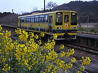Isumi200_20150320_08