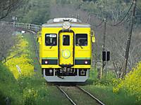 Isumi350_20150323_02
