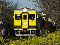 Isumi350_20150324_01