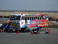 Sawara_duck20150329_01