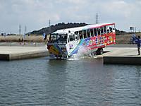 Sawara_duck20150329_06